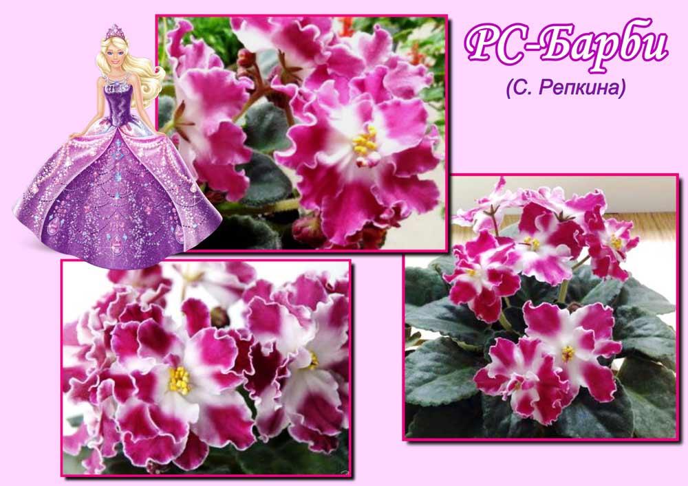 РС-Барби С. Репкиной