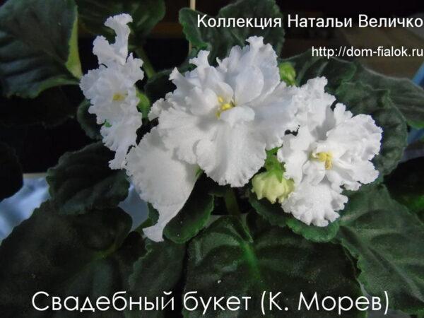 Свадебный букет (К. Морев)