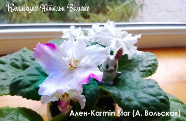 Ален-Karmin Star