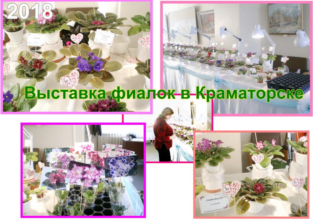 выставка фиалок в краматорске