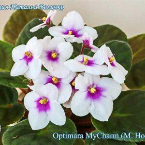 Optimara MyCharm (M. Holtkamp)