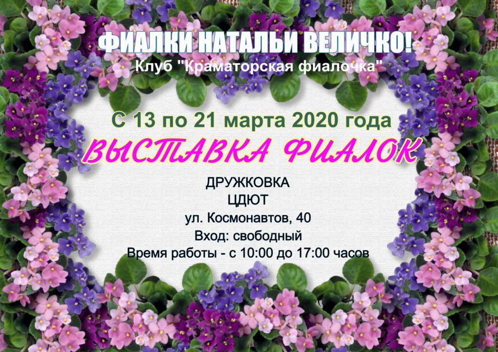 выставка сенполий в Дружковке