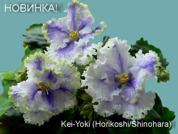 Kei-Yoki (Horikoshi/Shinohara)