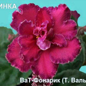 Ват-Фонарик (Т. Валькова)